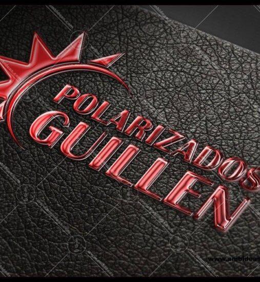 Polarizados Guillen - 2